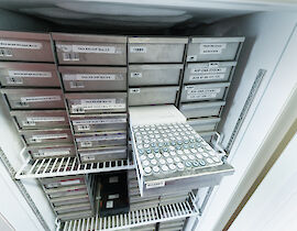 DNA samples of the National Register in the fridge of the Central Biobank Charité