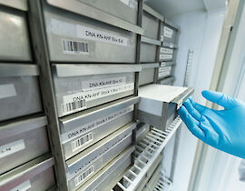 DNA-Proben des Nationalen Registers in der Biobank